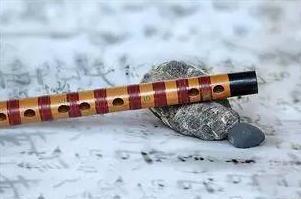 八种最适合孩子学习的乐器
